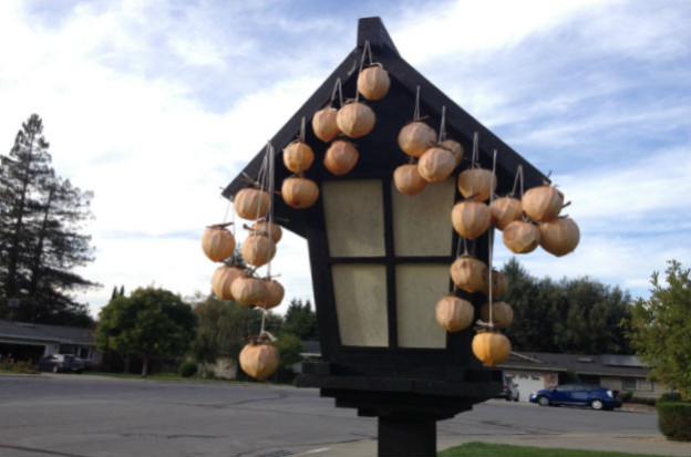 Hanging peeled persimmons being dried to make Hoshigaki in Mountain View, California.