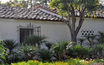 Spanish style garden with yucca